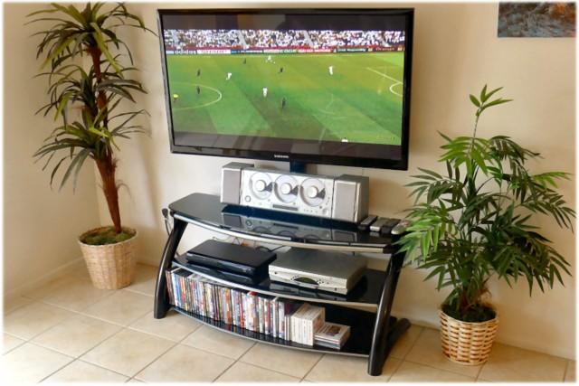 Huge Flat-Screen TV