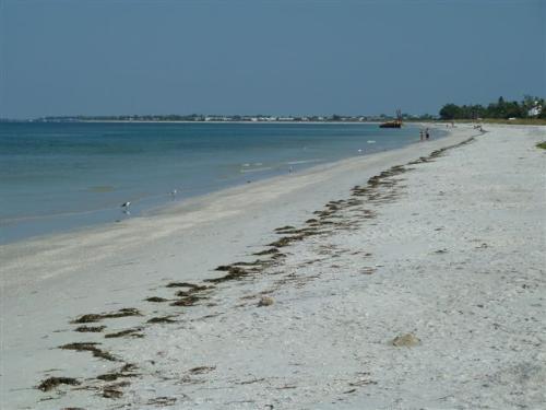 This is Paradise, Boca Grande