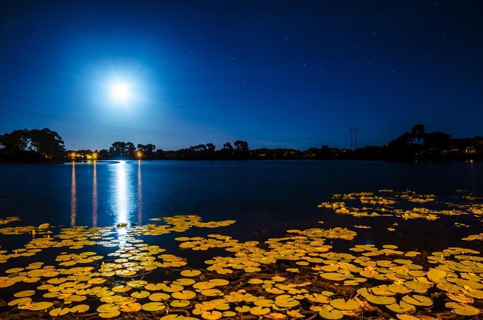 Moonlight at Lake Thomas